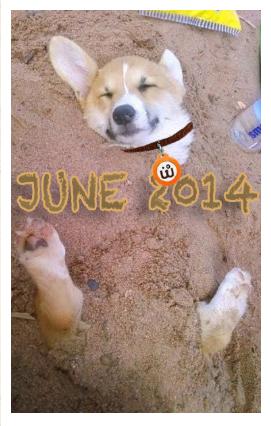Screen Shot 2014-06-09 at 11.53.44 AM